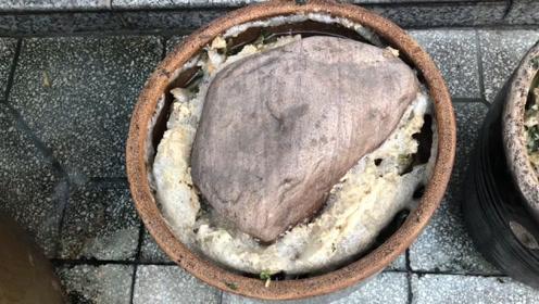 在家腌酸菜时,上面为什么会放一块石头?不是迷信,看完涨知识了