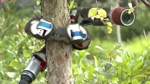 黑科技:蛇形仿生机器蛇,一个会爬树的机器人!