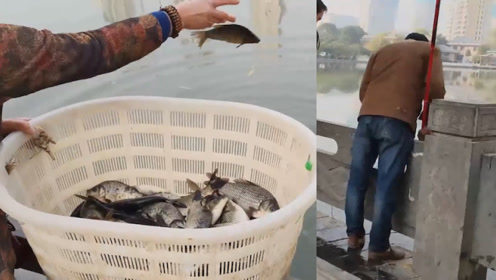 合适吗?市民买鱼湖边放生,多名男子放生现场等候捞鱼