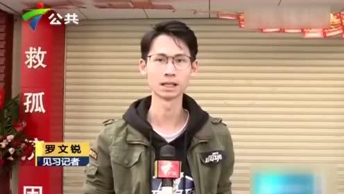 江门:疑操作不当 小车冲入福利彩票店