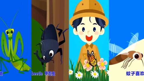 快乐英语:神奇的昆虫世界,蟋蟀蚂蚁蟑螂蝴蝶