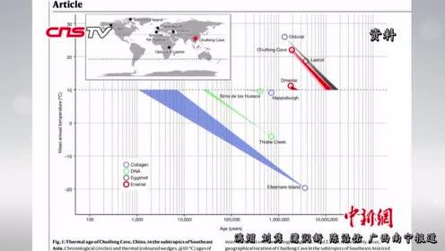 中外科学家从190万年前广西巨猿化石中提取遗传物质