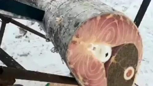 第一眼以为是木头,几秒后……我真想把锯末拿回去包饺子