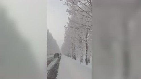 东北的冬天,美丽的雪景