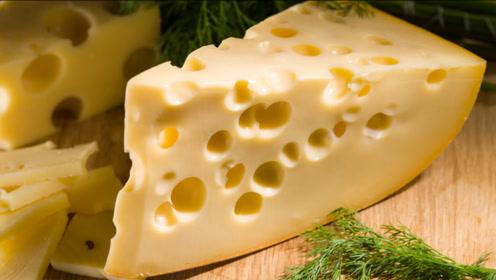 猫和老鼠里带洞奶酪原型是什么?终于知道为什么杰瑞那么喜欢了!