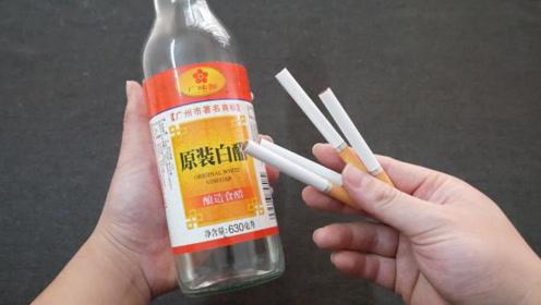 香烟跟白醋泡一泡,家家户户都需要,一年能省几百元,早知早受益