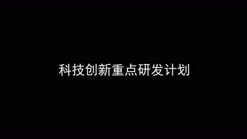 亩产1365公斤!袁隆平团队长江中游双季稻产量创新高