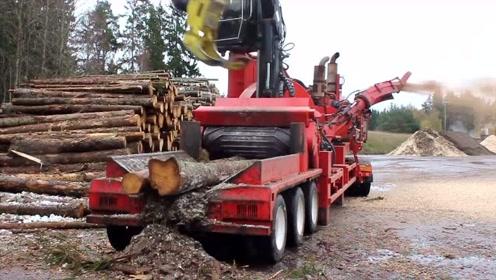 大型树木粉碎机,吞吐量很强大,这种适合国情吗?