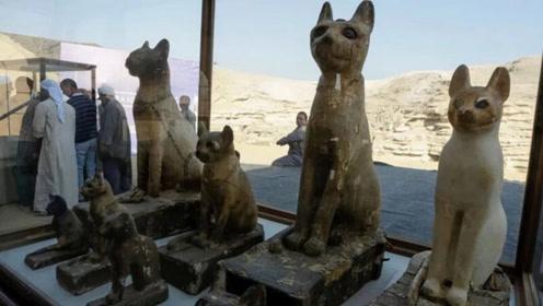 文物萌萌哒!埃及古墓群出去数十具动物木乃伊,还有大量猫咪雕像