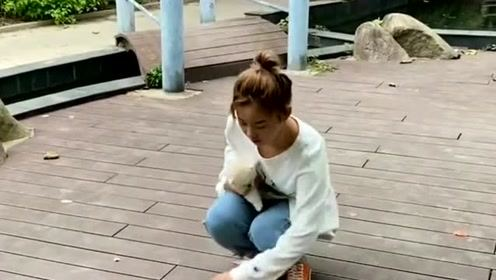 小姐姐路上捡了个小奶狗,接下来的一幕,感觉她有点太聪明的样子
