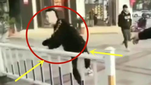 小伙翻护栏被抓现行,交警的处罚亮了:给我翻个够!