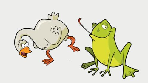 脑筋急转弯:癞蛤蟆如何吃到天鹅肉的?