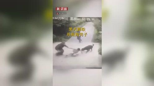 黑犬将男子拖拽撕咬致多处受伤 主人:狗受惊打它三拳才停下