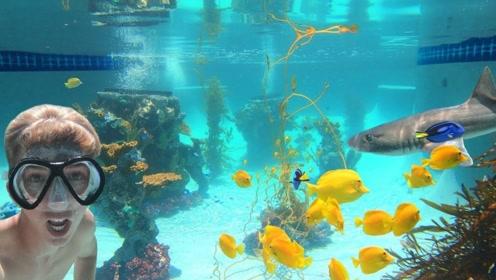 小伙把自家泳池改造成海底,还放进了两条鲨鱼,不出门也能体验海底世界了