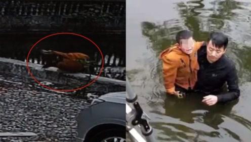 5岁男童不慎坠入约3米深池塘中 准爸爸不惧危险跳水救人