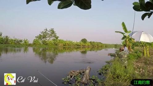 大哥河边放下钓竿一会就被拉动了,看今天第一竿钓到的大鱼就乐了