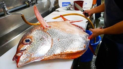 日本厨师刀工纯熟,现场拆解波曼太阳鱼,大块鱼肉好馋人!