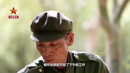 83岁老兵义务植树60年:在荒漠里把自己活成了一片绿洲 大漠风沙