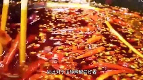 中国最能吃辣的三个省:一个不怕辣,一个辣不怕,还有一个怕不辣!