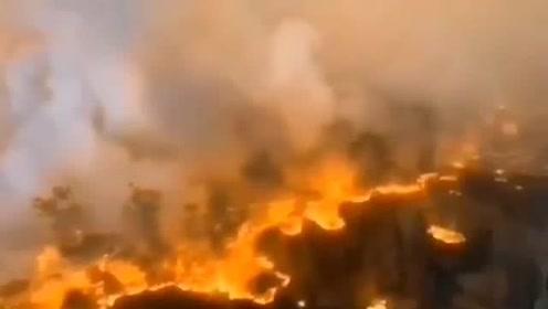 广东高明山火 已经疏散附近520余人