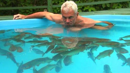 老人养了150条食人鱼,全部放在泳池中,下一秒老人的做法让人汗颜