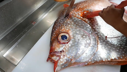 日本特级大厨如何料理月亮鱼?看完分解模式,一点没有浪费!