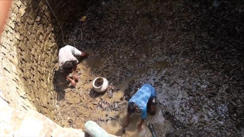 废井总是传来沙沙声,村民将水抽干一看,黑压压一片!