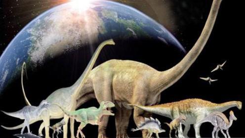 恐龙进化1.6亿年,真的没有形成文明吗?其实我们都错了!