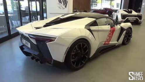 歪果小哥给你展示迪拜超跑W Motors FENYR外观