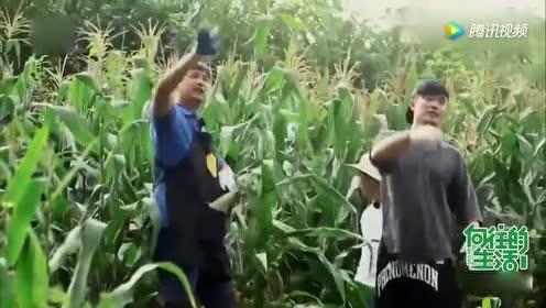 黄磊带陈赫在田里掰玉米!何炅被节目组气的直飙东北话