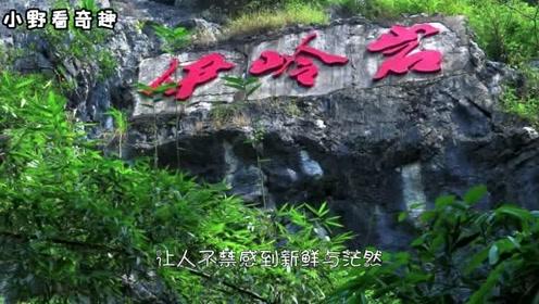 广东最美湖泊,曾上过小学课本,很多人听过没去过