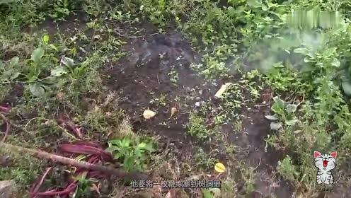 作死老外把鞭炮塞进树墩,擦火点燃后,场面一度失控!