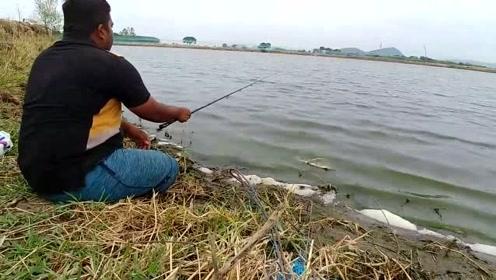 当你拿着高价的鱼竿是否想到过,有的地方,随便拿个鱼竿也比你钓的多