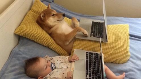 狗狗和宝宝,两个小可爱依偎在床上看电影!太温馨了