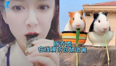 陈乔恩在线模仿仓鼠进食,声音魔性惟妙惟肖超萌,恋爱后的女人果然不一样