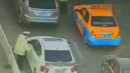 交警正在工作,遇到疯狂的司机,所作所为令人唾弃!