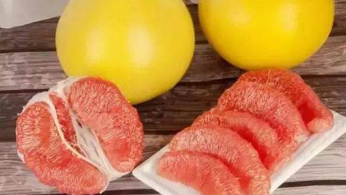 冬季多给孩子吃这4种时令果蔬,开胃健脾,促进消化,还增强免疫