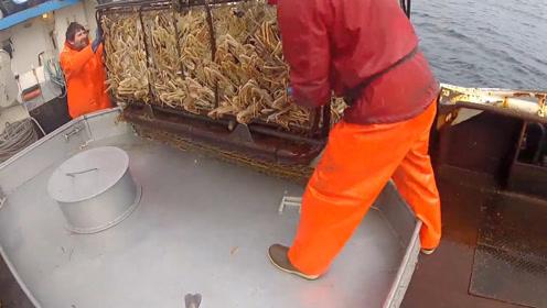 这渔业资源也没谁了,笼子里螃蟹塞得满满的!
