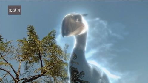 一次地质事件改变了一切,三千万年前的南美洲完全是另一片天地啊!