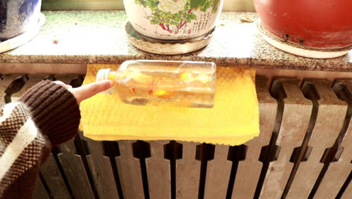 冬天在暖气上放个塑料瓶厉害了,聪明人都这么做,家里再也不干燥