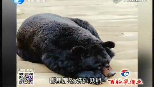 三岁男童被不明黑色动物重伤面部多处骨折伤情危重