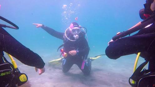 将平庸丢在海面外,这个女孩儿在日本伊豆的海底追梦!