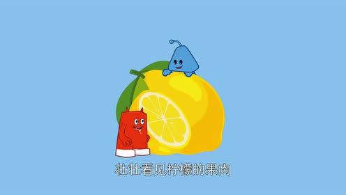 拼图真好玩:柠檬