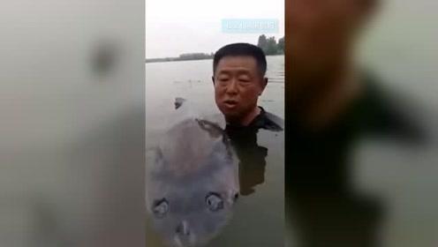 男子钓到150斤巨型青鱼 6次被鱼拉下水
