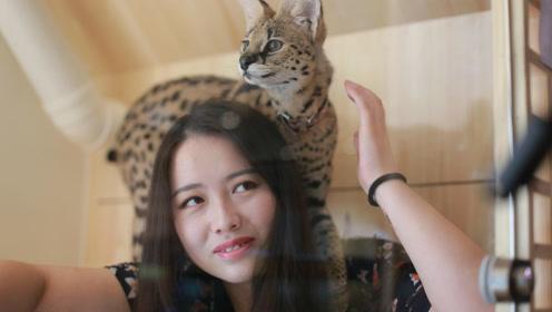 20岁女孩得重病死里逃生后,决定跟猫共度一生