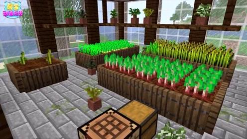 我的世界马哥创意教室 用花花草草装饰你的阳光花房