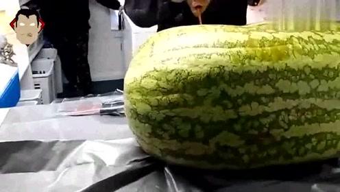 大叔买来一个260斤的大西瓜,切开之后瞬间被吓到,网友:好吃吗?