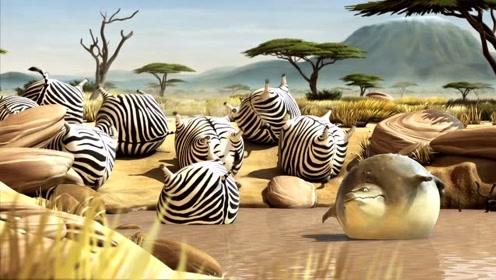 国外创意萌趣动画短片:圆滚滚的动物1