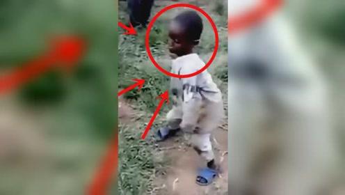 这里的宝宝,每一个都是天生的舞蹈奇才,网友:看的泪流满面