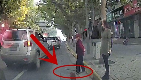 美女看到狗跑到马路上不管,视频车一个喇叭,让美女知道错哪了!